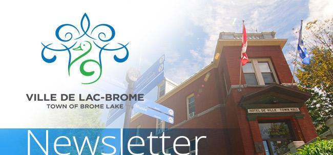 Town of BromeLake - header